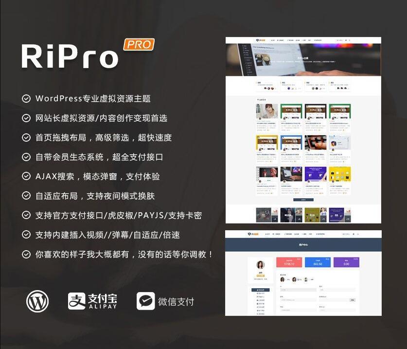 【WordPress主题】RiProV7.1主题最新破解去授权无限制版本-爱资源分享